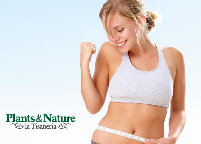 Vi presentiamo Plants&Nature un mondo di benessere che lavora per te