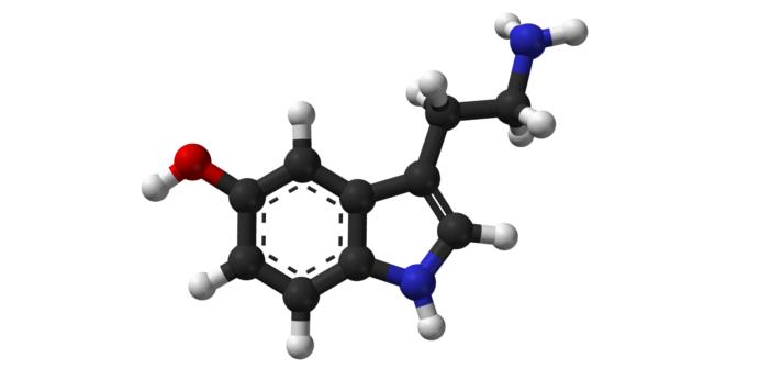 Serotonina: l'ormone del buonumore