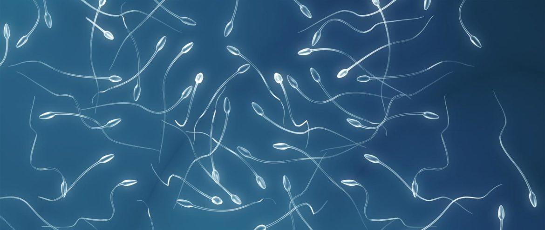 Cause e rimedi dell'infertilità maschile