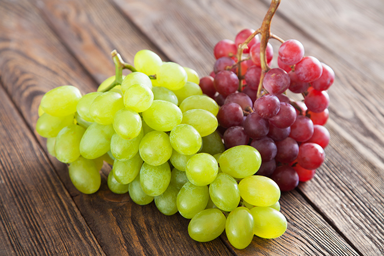 Uva rossa e bianca