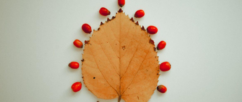 La spesa di Novembre: frutta e verdura da portare in tavola!