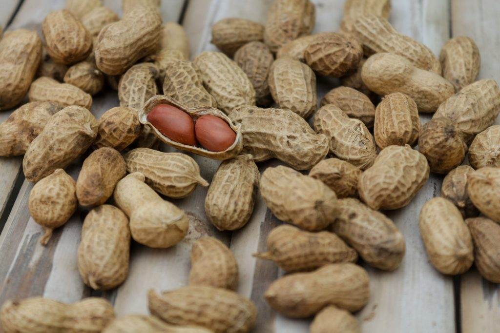 Frutta secca, nutriente e ricca di proteine.